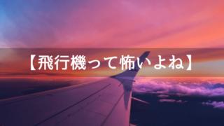 飛行機が怖いときの対処法