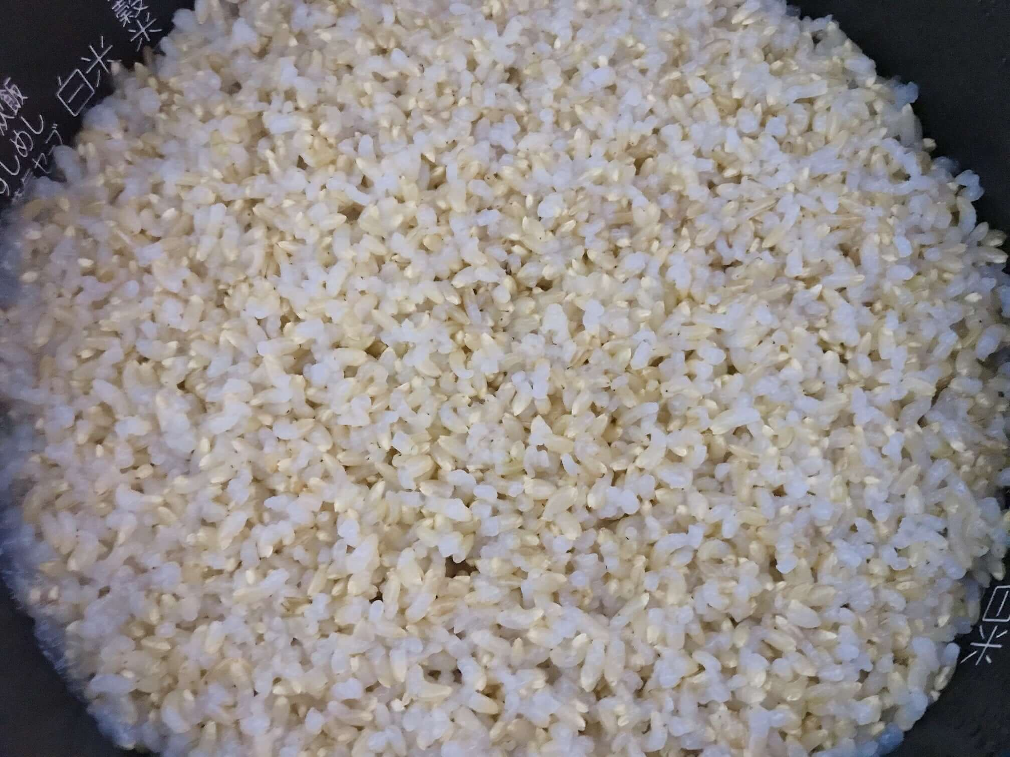 【玄米】金のいぶきを炊飯器で炊いた直後